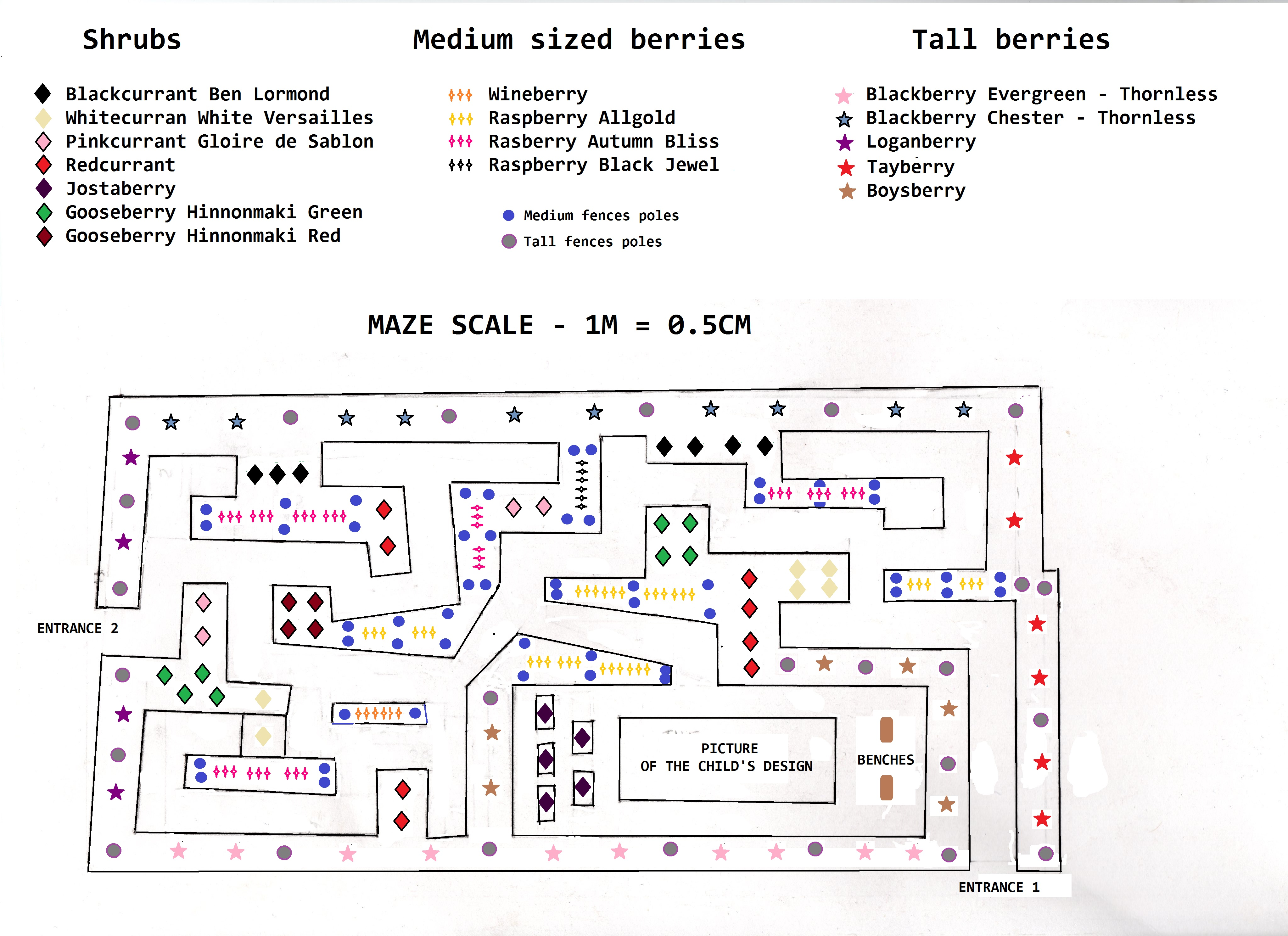 maze-scale-with-plants-in-good