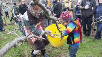 1. Dipping branch into cider (HOCO Wassail 2017)